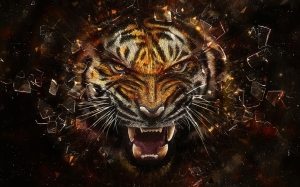6985590-angry-tiger-artwork